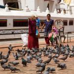 Bouddhanath: un anziana nutre i piccioni nella piazza dello stupa
